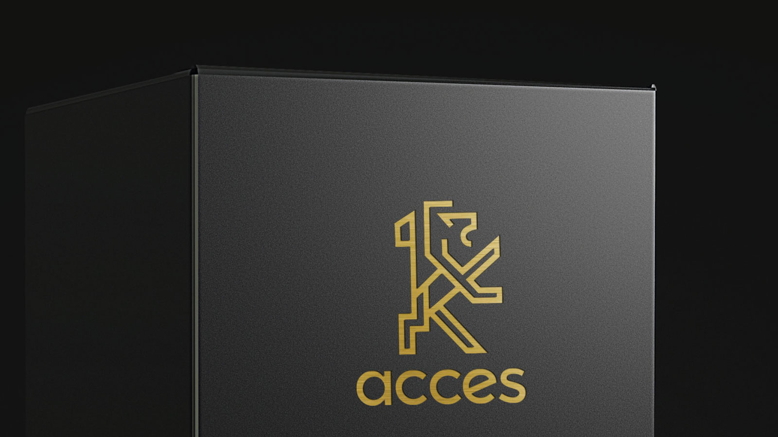 acces 3D Modelling Verpackung